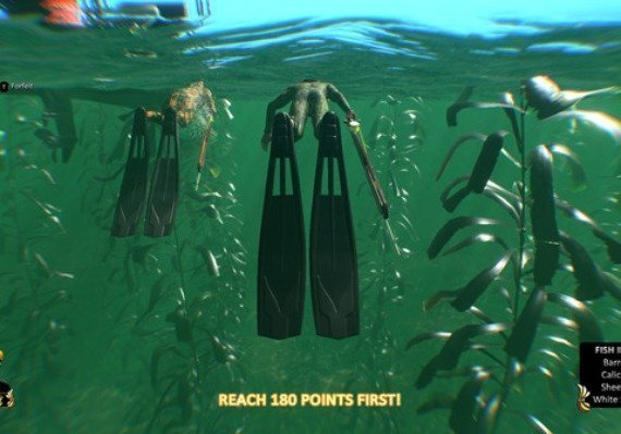 Freediving Hunter Spearfishing the World US